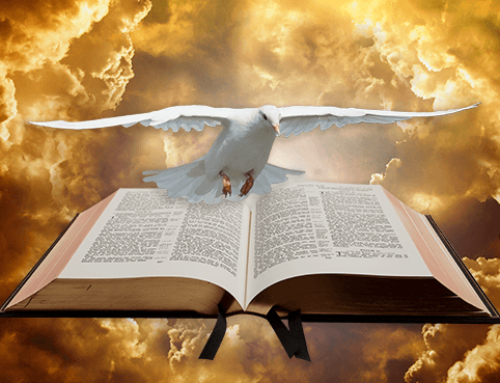 Living in the Freedom of Christ